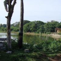 புதுக்கோட்டை-Quarry Lake,  Pudhukkottai    4447, Пудуккоттаи