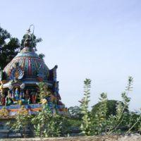 புதுக்கோட்டை Temple Vimaanam,  Pudhukkottai   4448, Пудуккоттаи