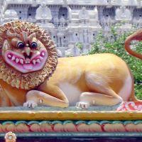 León multicolor en un templete  Tiruvannamalai, Тируваннамалаи