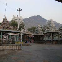 DSC08318 (சர்வ சித்தி விநாயகர் சன்னதி) - திருவண்ணாமலை அருணாச்சலேஸ்வரர் கோயில் Arunachaleswar 사원 : - 주님은 불의의 형태로 볼 수로 생각됩니다.큰 화재 램프가 Tiruvannamalai라는 언덕에 Karthikai의 월 보름 (Karthigai 일) (11 월 / 12 월)에 점등됩니다. 이 화재는 주위에 몇 킬로미터를 위해 볼 수 있습니다 -  Arunachaleswar วั, Тируваннамалаи