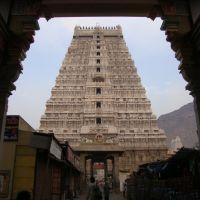 DSC08328  Arunachaleswara寺院、ティルヴァンナーマライ  - Arunachaleswar寺: - 主は火の形で見られると考えられている。巨大な火のランプはティルヴァンナーマライと呼ばれる丘にKarthikaiの月の満月の日(Karthigai日)(11月/ 12月)に点灯します。この火災は、約数キロのための見える Arunachaleswara храм, Тируваннамалаеதிருவண்ணாமலை அருணாச்சலேஸ்வரர் கோயில் கீழ கோபுரம், Тируваннамалаи