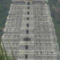 thiruvannamalai raja kopuram, Тируваннамалаи