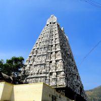 Gopuram of Annamalaiyar Temple, Thiruvannamalai, Tamilnadu, Тируваннамалаи