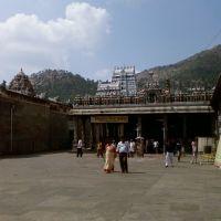 Unnamalai Amma, Тируваннамалаи