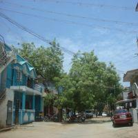 சக்தி நகர், பாளையங்கோட்டை   Shakthi Nagar,  Palaiyamkottai  பாளையங்கோட்டை പാലൈയങ്കൊട്ടൈ  పాళైయంకోట్టై पाळैयङ्कोट्टै পালৈযঙ্কোট্টৈપાલૈયન્કોટ્ટૈ ਪਾਲੈਯੰਕਕੋੱਟੈ ପାଲିୟଂକୋତଈ    6284, Тирунелвели