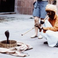 Fachiro con cobra, Agra - India (1985), Агра