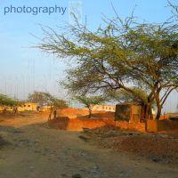 Awas vikas colony    naturephotographyindia.com, Алигар
