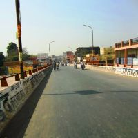 Minakshi bridge     naturephotographyindia.com, Алигар