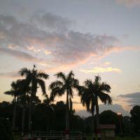 Μια άποψη το απόγευμα από το πάρκο, Аллахабад