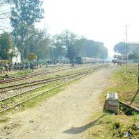 Bahraich Railway Line, Бахраич