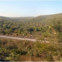 Via Férrea - Agra/Jhansi - India .τ®√ℓΞΛج, Йханси