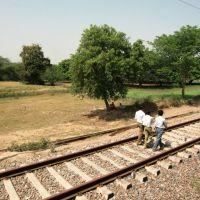 Rail walkers, Канпур