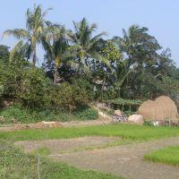 Bardam, Мирзапур