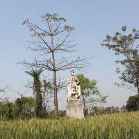 The statue of Kalbe Ali Khan, Рампур