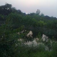 Green Rampur, Рампур