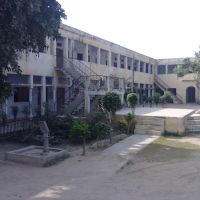 Shankar College (+918285544159) Suhail Ziya, Самбхал