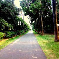 park, Ситапур