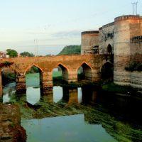 Chowburja Gate, Lohagarh( Iron fort ), Bharatpur, Rajasthan, Хатрас
