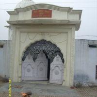 bhagchee, Амбала