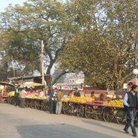 Rehri (handcart) Bazaar, Амбала