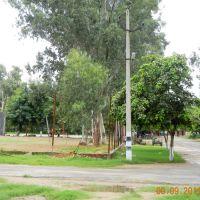 Volley Ball Ground, Bhim Stadium, Бхивани