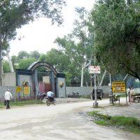 Bhiwani Zoo, Бхивани