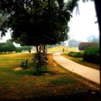 Atal Park, Карнал