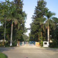 GATE OF FARM FIELD, Карнал