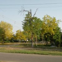 NDRI Roads, Карнал