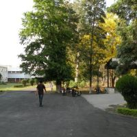 NDRI, Карнал