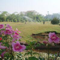 P L Deshpande Garden, Пуна