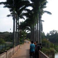LAL BAG 2, Бангалор