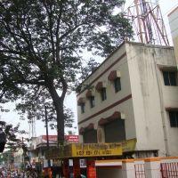 சாயி நகர் பஸ் ஸ்டாப் SAI Nagar Bus Stop  சென்னைచెన్నై ചെന്നൈ चेन्नै চেন্নই.6106, Мадрас