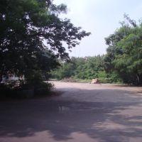 கோயம்பேடு കോയംബേടു కోయంబేడు कोयमबेडू   SAF Games Village - Koyambedu  1494, Мадрас