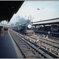 delhi, train hunting pigeons © weggi.ch, Дели