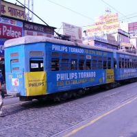 Kolkata Tram 2010, Калькутта