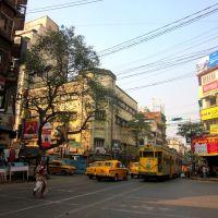 Trams in Kolkata, Калькутта