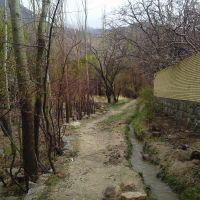 کوچه باغ, Марагех