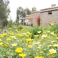 Wild Garden-North Bovardeh, Абадан