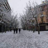 El passeig de Manresa, Манреса