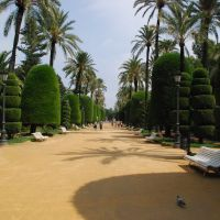 Parque Genovés (Cádiz, 12-9-2007), Алжекирас