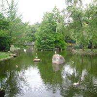 Naturaleza Viva. Parque de Castrelos. Vigo. España., Виго