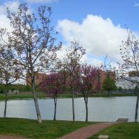 Laguna de Duero - Lago, Вальядолид