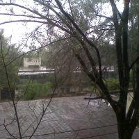 salones tec. 88, Гвадалахара