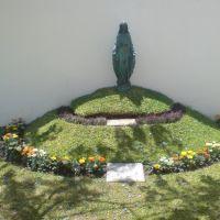 Virgen en CRIT Occidente, Гвадалахара