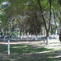 El parque de Horcadas, Гвадалахара