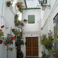 Calle de Priego en el barrio del Adarve. Junio de 2009, Кордоба