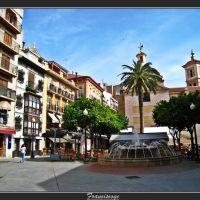 Plaza de Las Flores , con la palmera original.....(By FranciscoGC), Мурсия