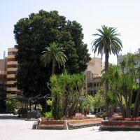 Murcia, Plaza de Santo Domingo, Мурсия