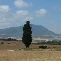Montejurra desde Villatuerta, Наварра
